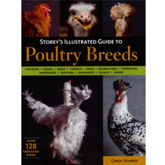 Storey's Illustrated Guide to Poultry Breeds (Paperback)