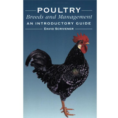 Poultry Breeds and Management: An Introductory Guide