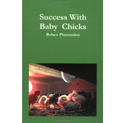 Success With Baby Chicks