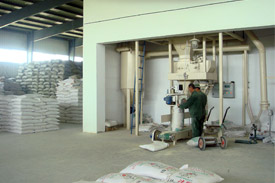 Two new feed mills completed in Chongqing