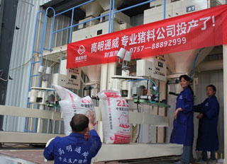 Tongwei enters pig feed production