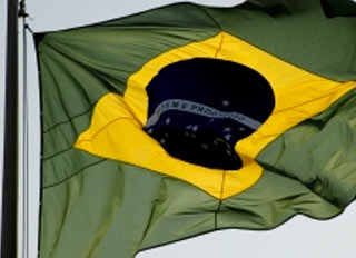 Brazilian feed industry expected to rebound after 2012 reduction