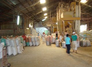 More feed mills needed in Visayas and Mindanao