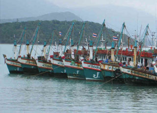 Thai Feed Mill Association drafts road map for sustainable fisheries