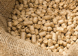 Compound feed consumption to reach 28m tonnes by 2017