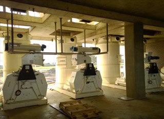New feed mill to help boost S.African agriculture and agro-processing sectors