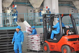 Ningxia feed processing industry output reaches 1.56 billion RMB