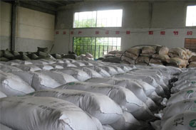 China's feed industry: 2009 review and a look at this year's expectations