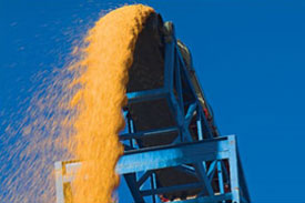 4 Cargoes of US corn due in China in July